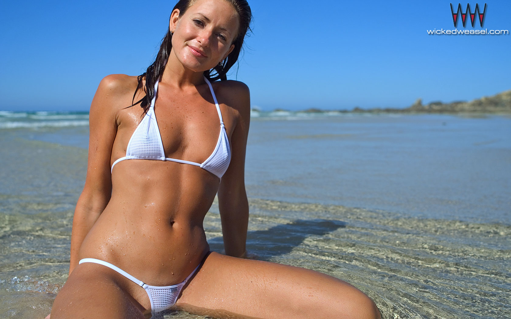 """Search Results for """"Wicked Weasel Contributor Archives ..."""